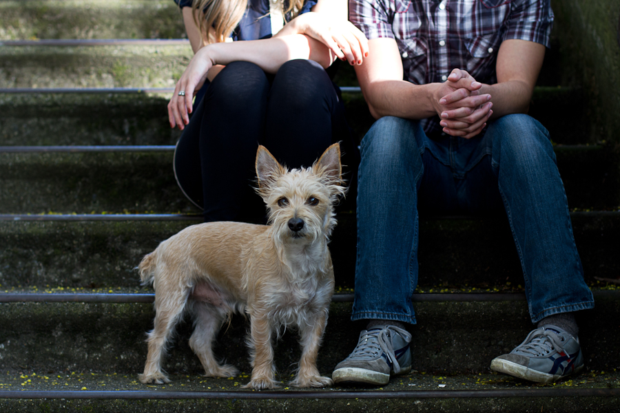 couple_seattle_dog_anniversary-11