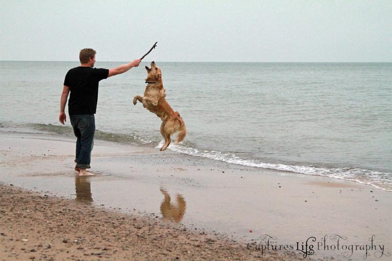 dog_playing_reflection_beac