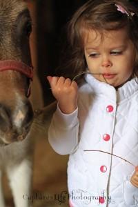 horse_girl_hay