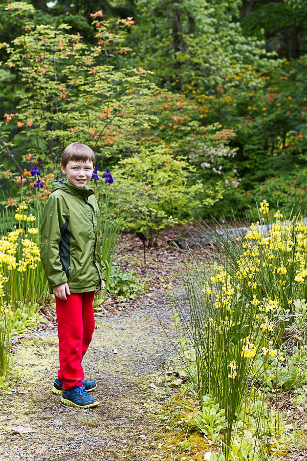 rhododendron garden -18