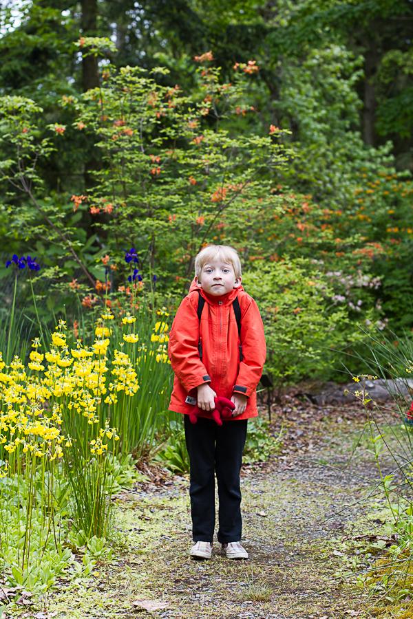rhododendron garden -19