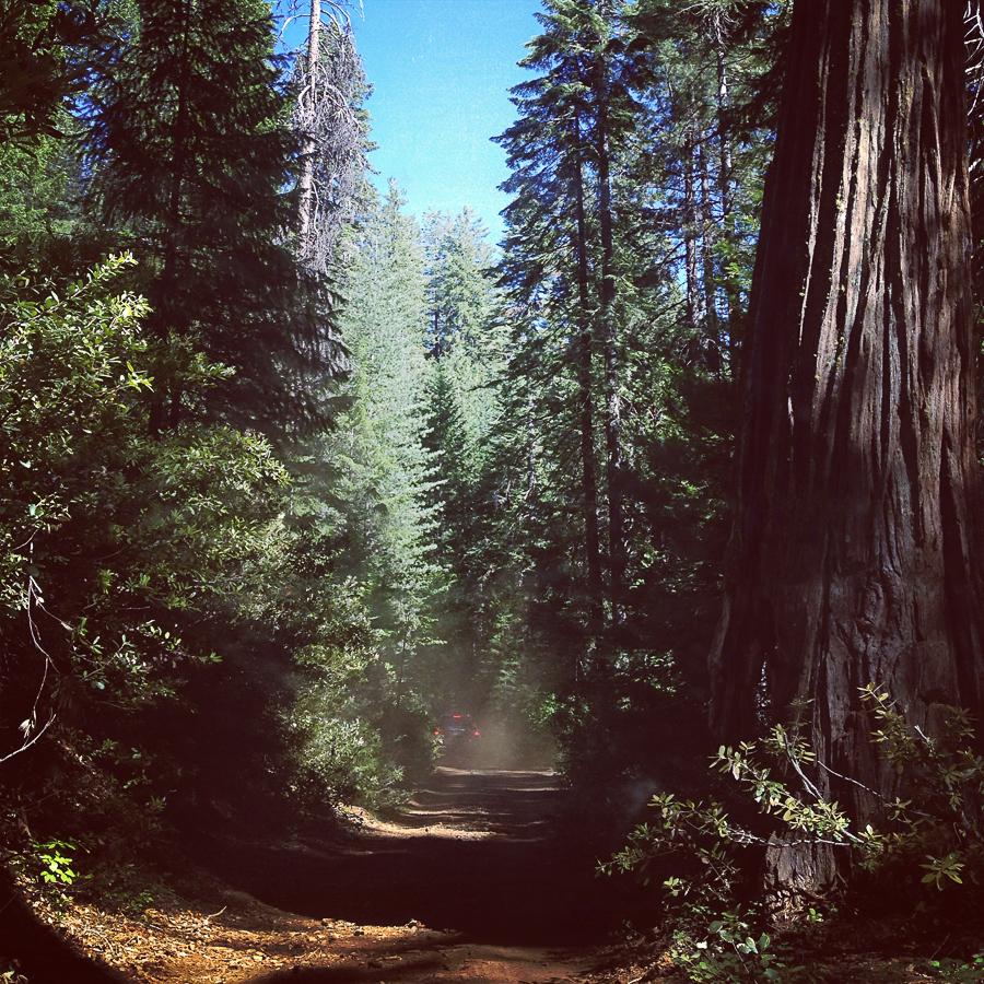 california_vacation_june 2013_-16
