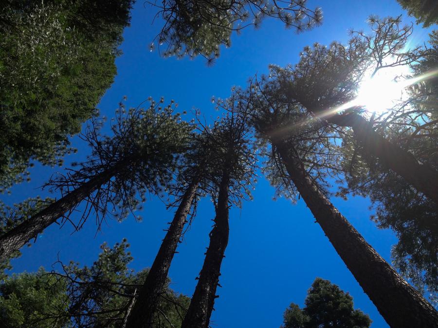 california_vacation_june 2013_-53
