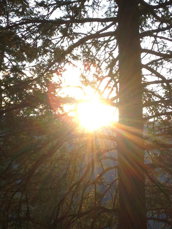 aspen hike at sunrise__iphone_resized-2