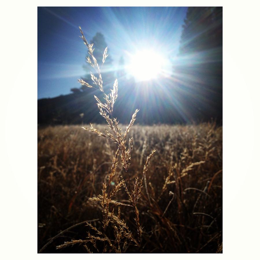 september_blog-1