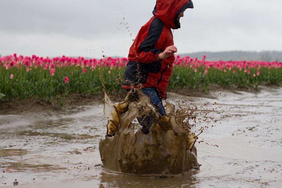 tulip festival-41