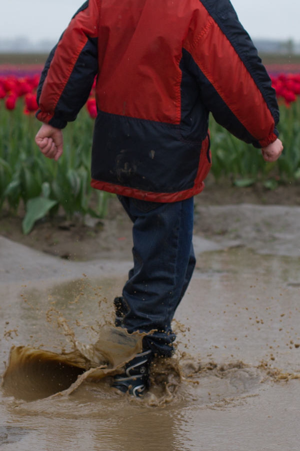 tulip festival-42