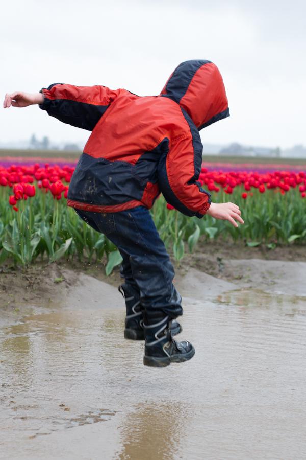 tulip festival-44